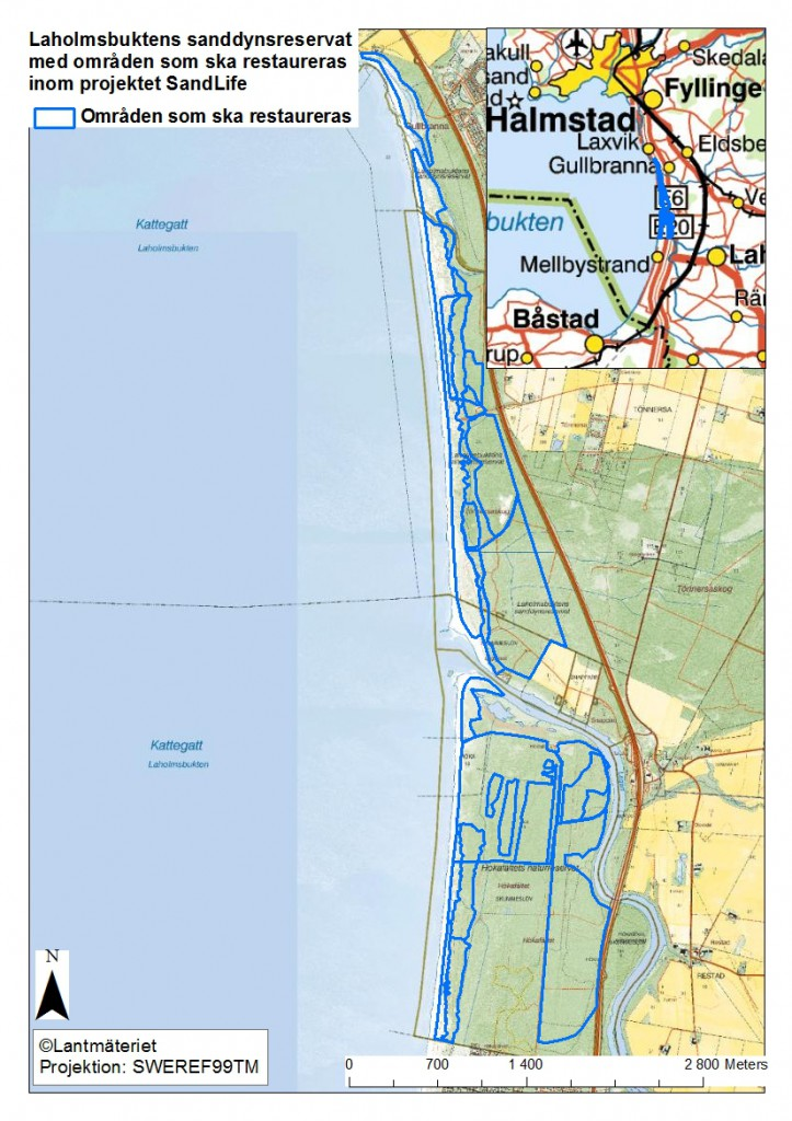 Laholmsbuktens sanddynsreservat benefit